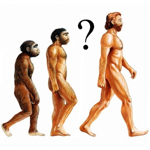 Top 10 Evolution myths